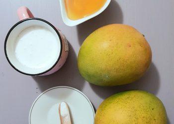 ingrediente inghetata de mango raw vegan
